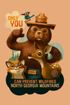 North Georgia Mountains - Smokey Bear & Friends - Only You - Contour - Lantern Press Artwork