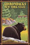 Adirondacks, New York - Black Bear in Forest - Lantern Press Artwork