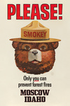 Moscow, Idaho - Only You Can Prevent Wildfires - Smokey Bear - Vintage Poster