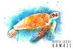 North Shore, Hawaii - Sea Turtle - Watercolor - Lantern Press Artwork