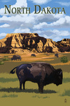 North Dakota - Bison - Lantern Press Artwork