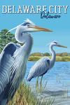 Delaware City, Delaware - Blue Herons - Lantern Press Artwork