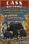 Cass, West Virginia - Black Bear Family - Vintage Sign - Lantern Press Artwork