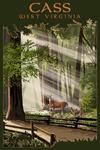 Cass, West Virginia - Deer and Fawns - Lantern Press Artwork