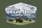 Grand Teton National Park, Wyoming - Buffalo & Mountain Scene - Contour - Lantern Press Photography
