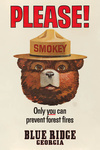Blue Ridge, Georgia - Smokey Bear Vintage Poster - Only You Can Prevent Forest Fires