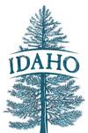 Idaho - Blue Spruce Tree - Contour - Lantern Press Artwork