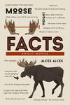 Facts About Moose - Lantern Press Artwork