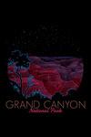 Grand Canyon National Park, Arizona - Night Sky - Neon Scratchboard - Contour - Lantern Press Artwork