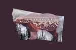 Glacier National Park, Montana - Bear Double Exposure - Contour - Lantern Press Artwork