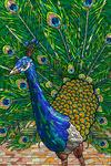 Peacock - Mosaic - Lantern Press Artwork