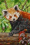 Red Panda - Mosaic - Lantern Press Artwork