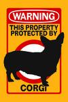 Corgi - Warning - Contour - Lantern Press Artwork