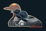 Mercer, Wisconsin - Loons & Sunset - Contour - Lantern Press Artwork