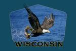 Wisconsin - Eagle Catching Fish - Contour - Lantern Press Artwork