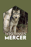 Mercer, Wisconsin - Wolf in Forest - Contour - Lantern Press Photography