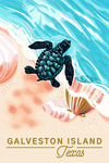 Galveston Island, Tx - Turtle and Shells - Courageous Explorer - Lantern Press Artwork