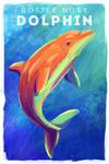 Bottlenose Dolphin - Vivid Series - Lantern Press Artwork