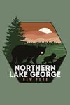 Northern Lake George, New York - Vector Bear Family - Contour - Lantern Press Artwork