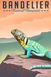 Bandelier National Monument, New Mexico - Collard Lizard - Litho - Lantern Press Artwork