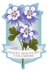 Rocky Mountain Columbine - Vintage Flora - Contour