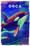 Orca - Vivid Series - Lantern Press Artwork