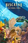 Biscayne National Park, Florida - Painterly National Park Series