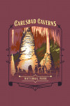 Carlsbad Caverns National Park, New Mexico - Painterly National Park Series - Contour