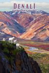 Denali National Park, Alaska - Painterly National Park Series