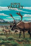 Kobuk Valley National Park, Alaska - Painterly National Park Series