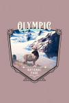 Olympic National Park, Washington - Painterly National Park Series - Contour