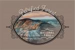 Petrified Forest National Park, Arizona - Painterly National Park Series - Contour