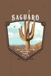 Saguaro National Park, Arizona - Painterly National Park Series - Contour