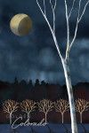 Nederland, Colorado - Quietly the World Awakens - Night Sky - Winter - Lantern Press Artwork