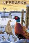 Nebraska - Pheasants - Lantern Press Artwork