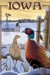 Iowa - Pheasants - Lantern Press Artwork
