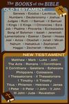 The Books of the Bible - Inspirational - Lantern Press Artwork