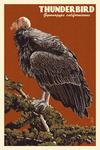California Condor - Letterpress - Lantern Press Poster