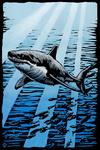 Great White Shark - Scratchboard - Lantern Press Artwork