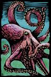 Octopus - Scratchboard - Lantern Press Artwork