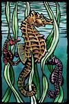 Seahorses - Scratchboard - Lantern Press Artwork