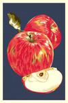 Apple - Letterpress - Lantern Press Artwork