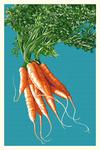 Carrots - Letterpress - Lantern Press Poster