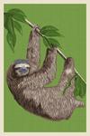 Three Toed Sloth - Letterpress - Lantern Press Artwork