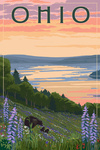 Ohio - Lake & Bear Family - Lantern Press Artwork