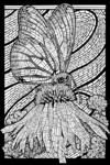 Monarch Butterfly - Coloring Book - Lantern Press Artwork