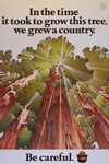 Smokey Bear - Time it Took to Grow a Tree - Vintage Poster
