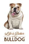 Bulldog - Life is Better - White Background - Lantern Press Artwork