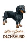 Dachshund Black - Life is Better - White Background - Lantern Press Artwork