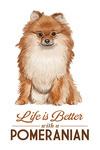 Pomeranian - Life is Better - White Background - Lantern Press Artwork
